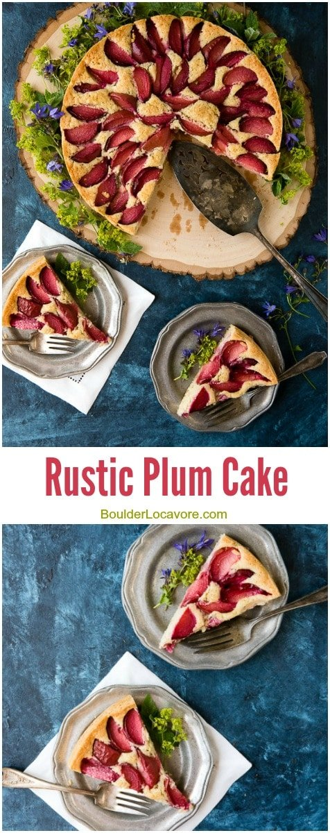 Rustic Plum Cake. Simple seasonal cake everyone will love. Gluten-free or regular options. - BoulderLocavore.com