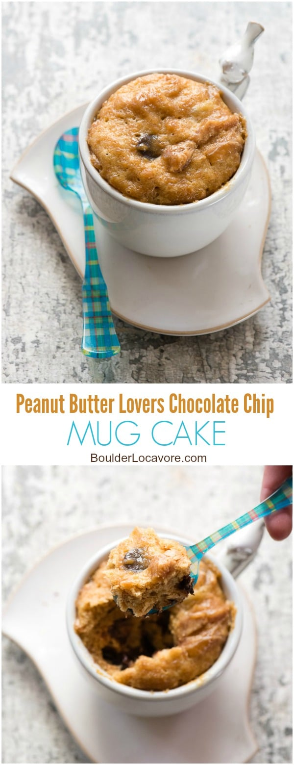 Peanut Butter Lovers Chocolate Chip Mug Cake. Rich, flourless peanut butter cake for one with chocolate chips. Ready in 1 minute in the microwave! - BoulderLocavore.com