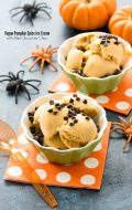 Vegan Pumpkin Spice Ice Cream with Mini Chocolate Chips (allergy-friendly)