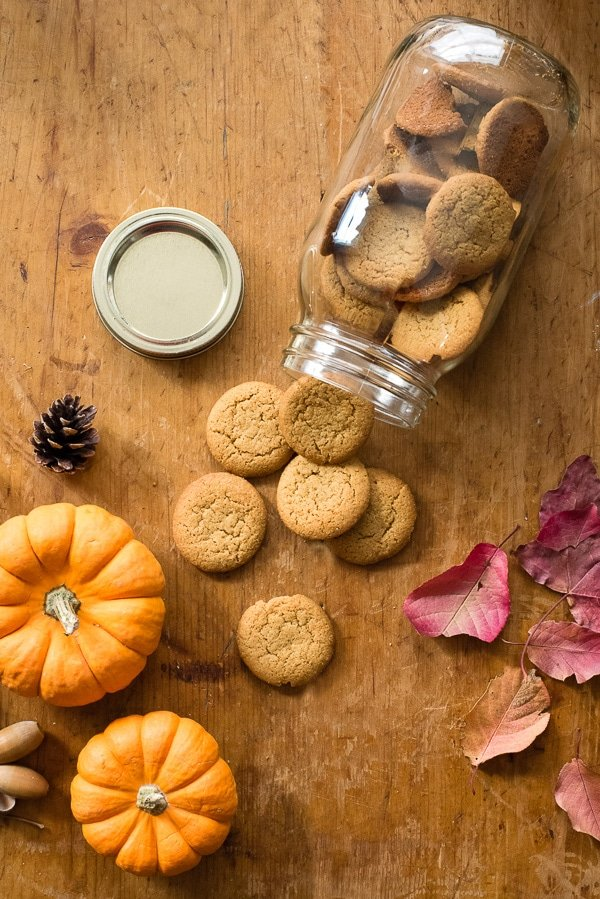 Gluten Free Ginger Snaps (crust) for Pumpkin Cinnamon Ripple Ice Cream Pie with Salted Caramel Sauce BoulderLocavore.com