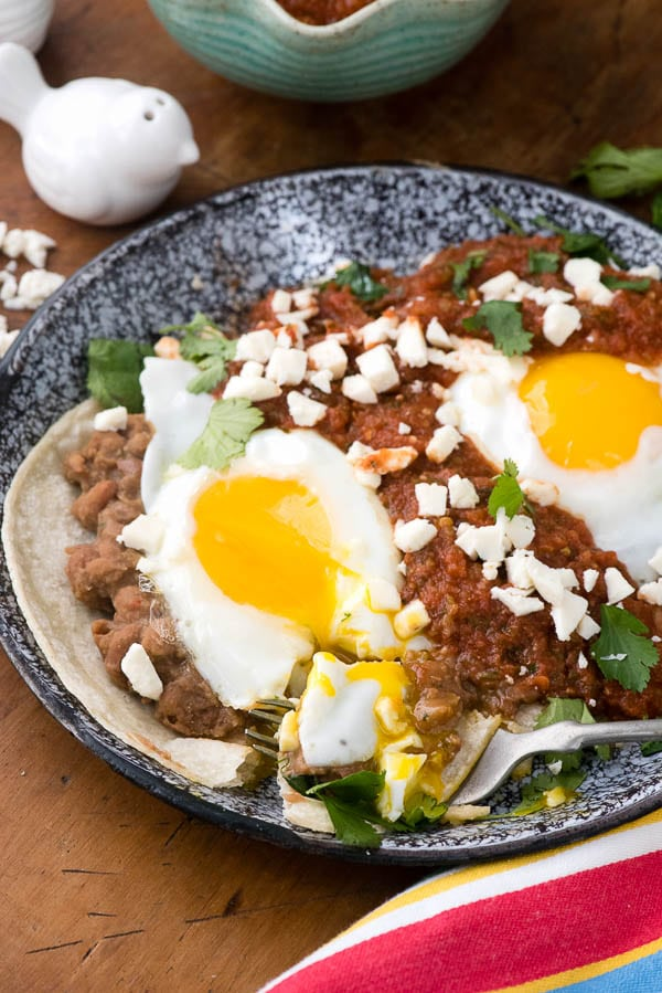 close up image of authentic Mexican Huevos Rancheros on a plate. A fork full of the food sits on the plate