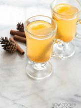 Slow Cooker Mulled Apple Cider. Fresh apple cider, whole spices and just a smidge of sweetness make this a cozy winter drink for all! BoulderLocavore.com