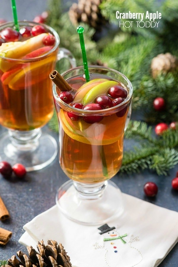 Cranberry Apple Hot Toddy cocktail with apple slices, cinnamon stick and cranberries in a glass mug BoulderLocavore.com