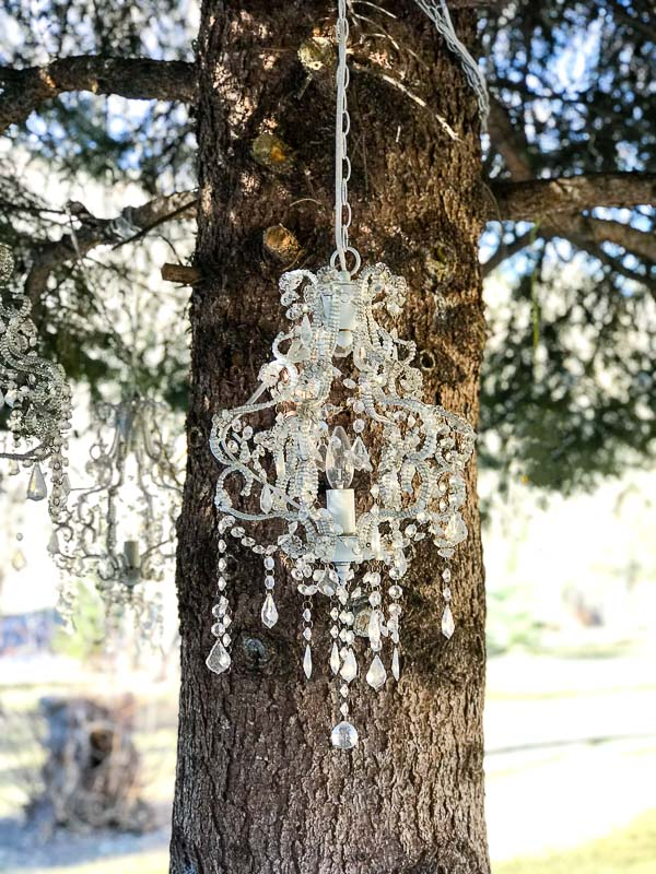 Crystal chandelier hanging from a pine tree