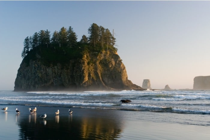 Rialto Beach Washington at dusk