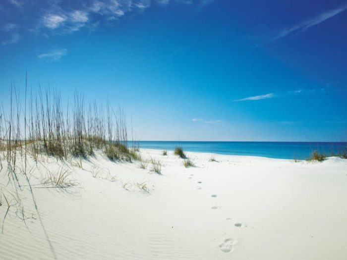 Panama City Beach (Shell Beach) Florida - one of the Best East Coast Beaches