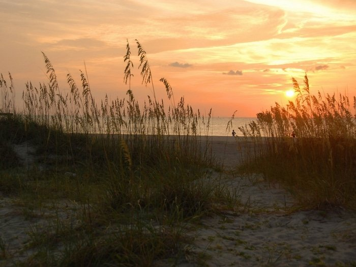 Best family beach vacations: Sunrise on Tybee Island and sea grass