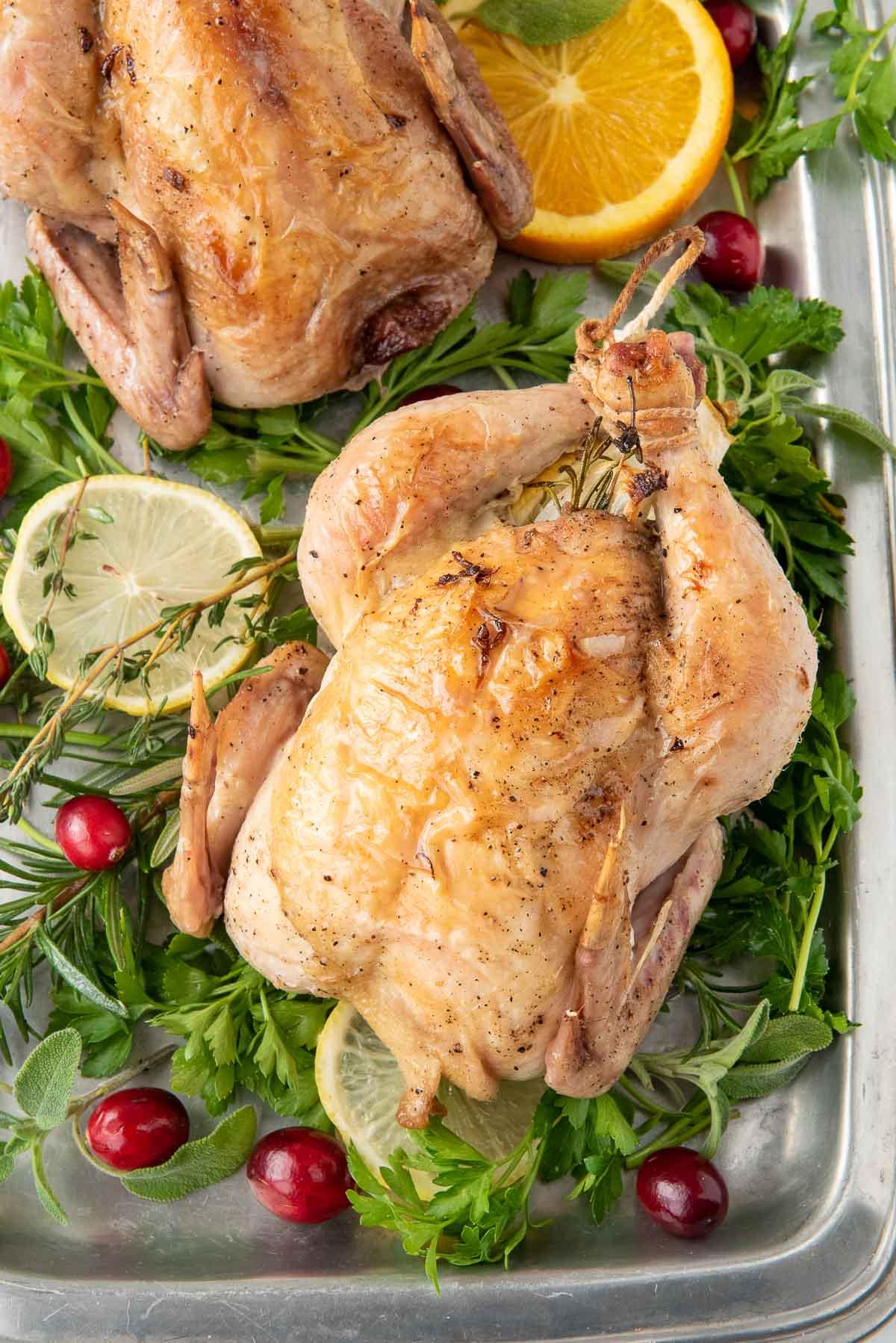 cornish hen baked on greens