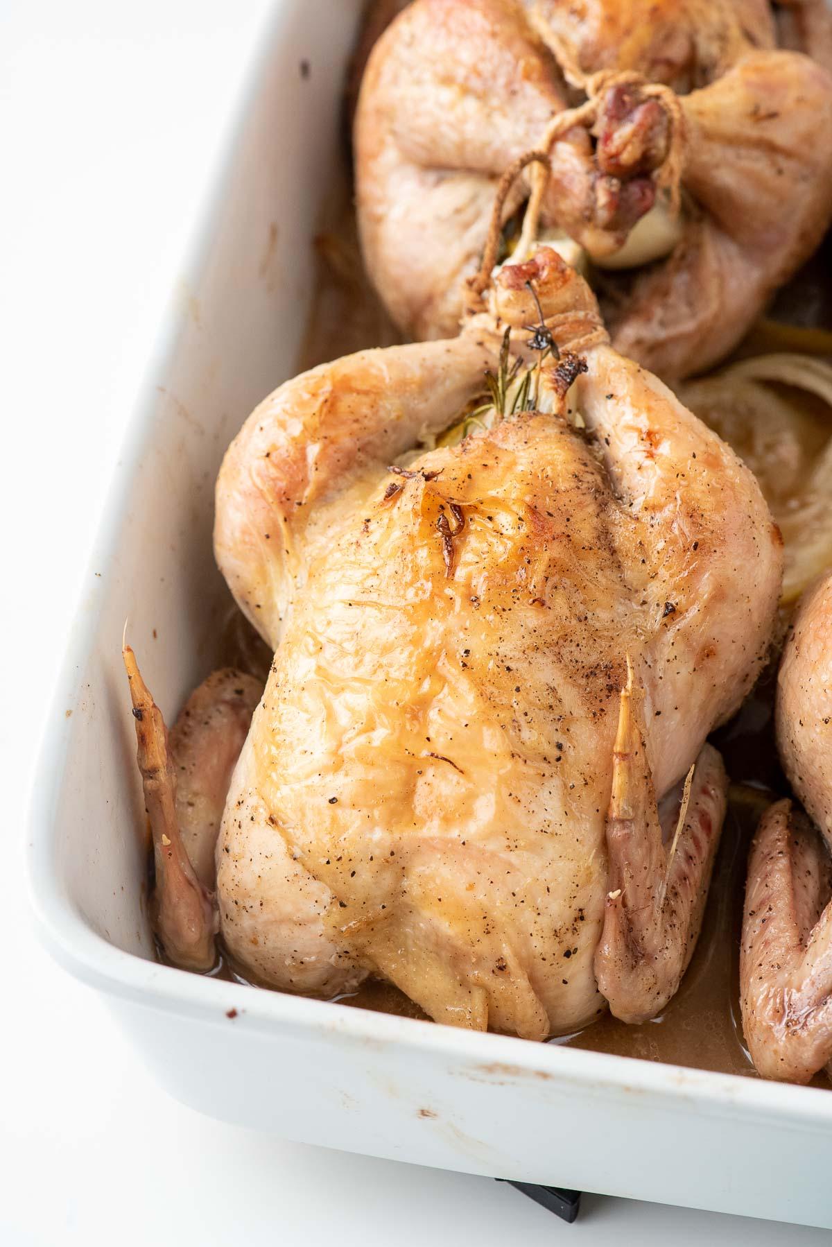 cornish hen in baking dish close up