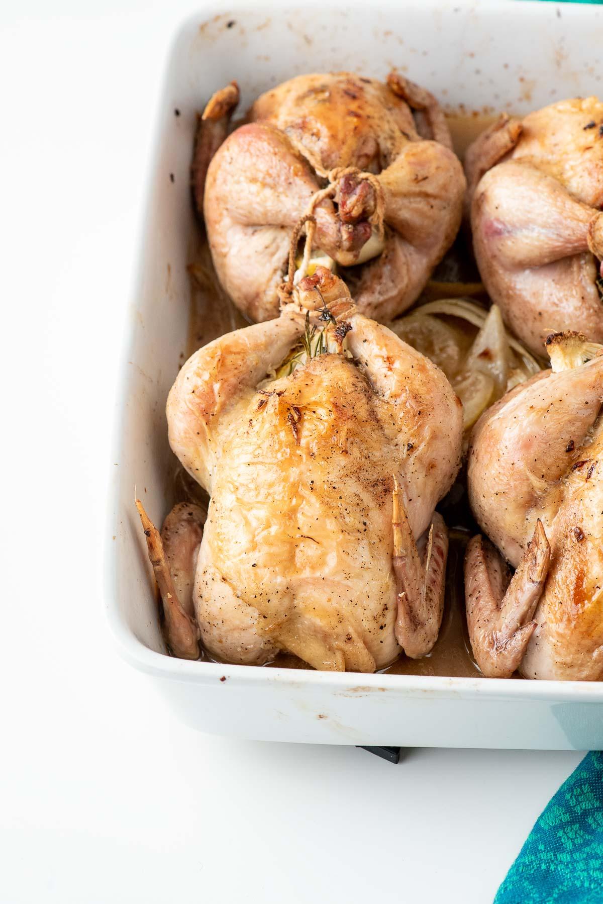 cornish hen in baking dish