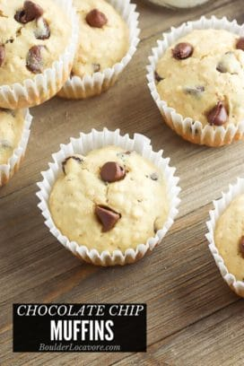 Chocolate Chip Muffins title image