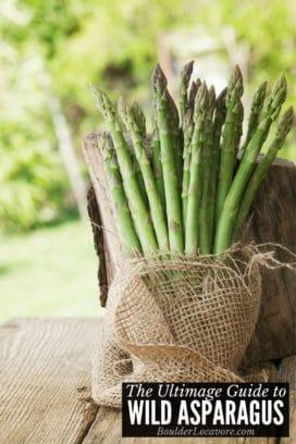 asparagus stalks in burlap title image