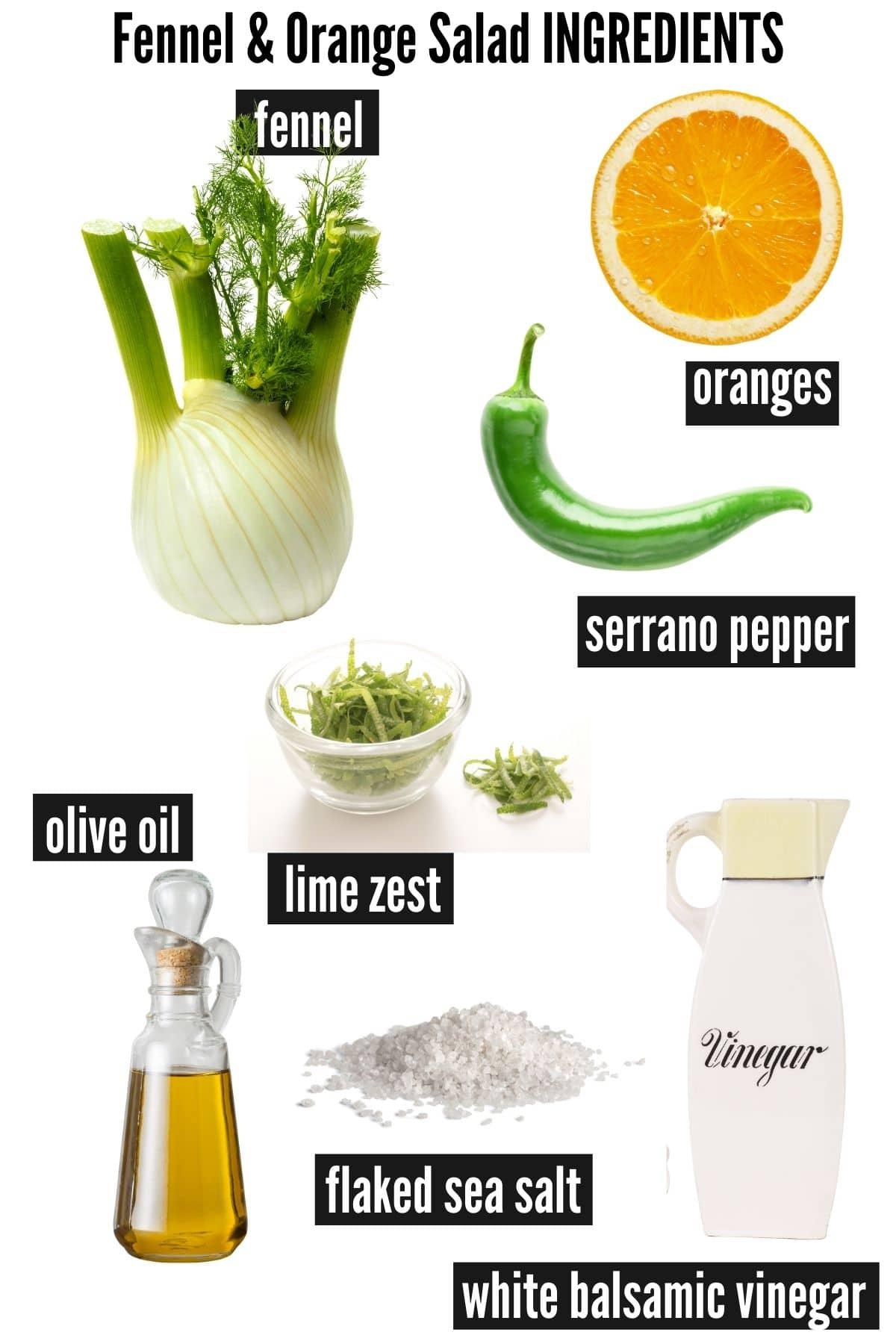fennel orange salad ingredients