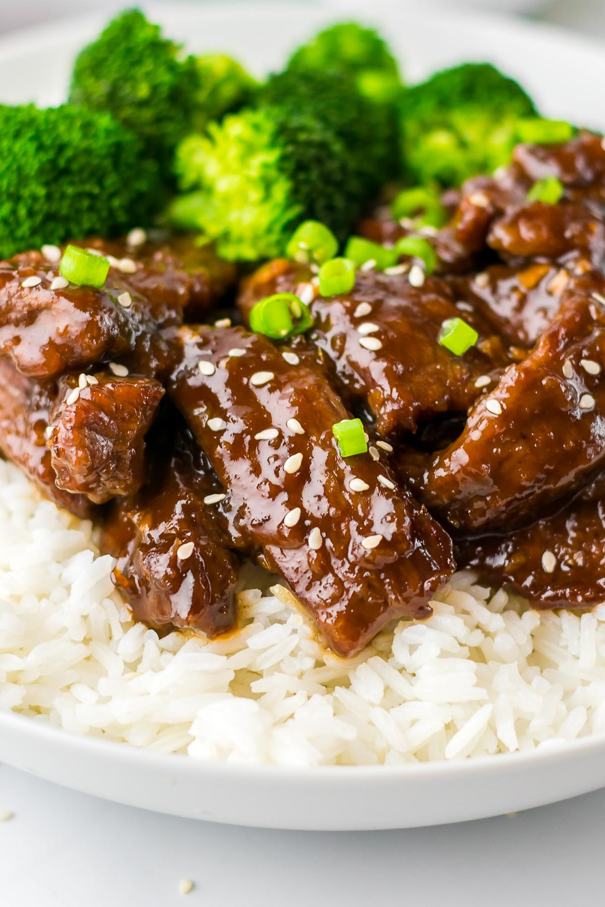 mongolian beef front view