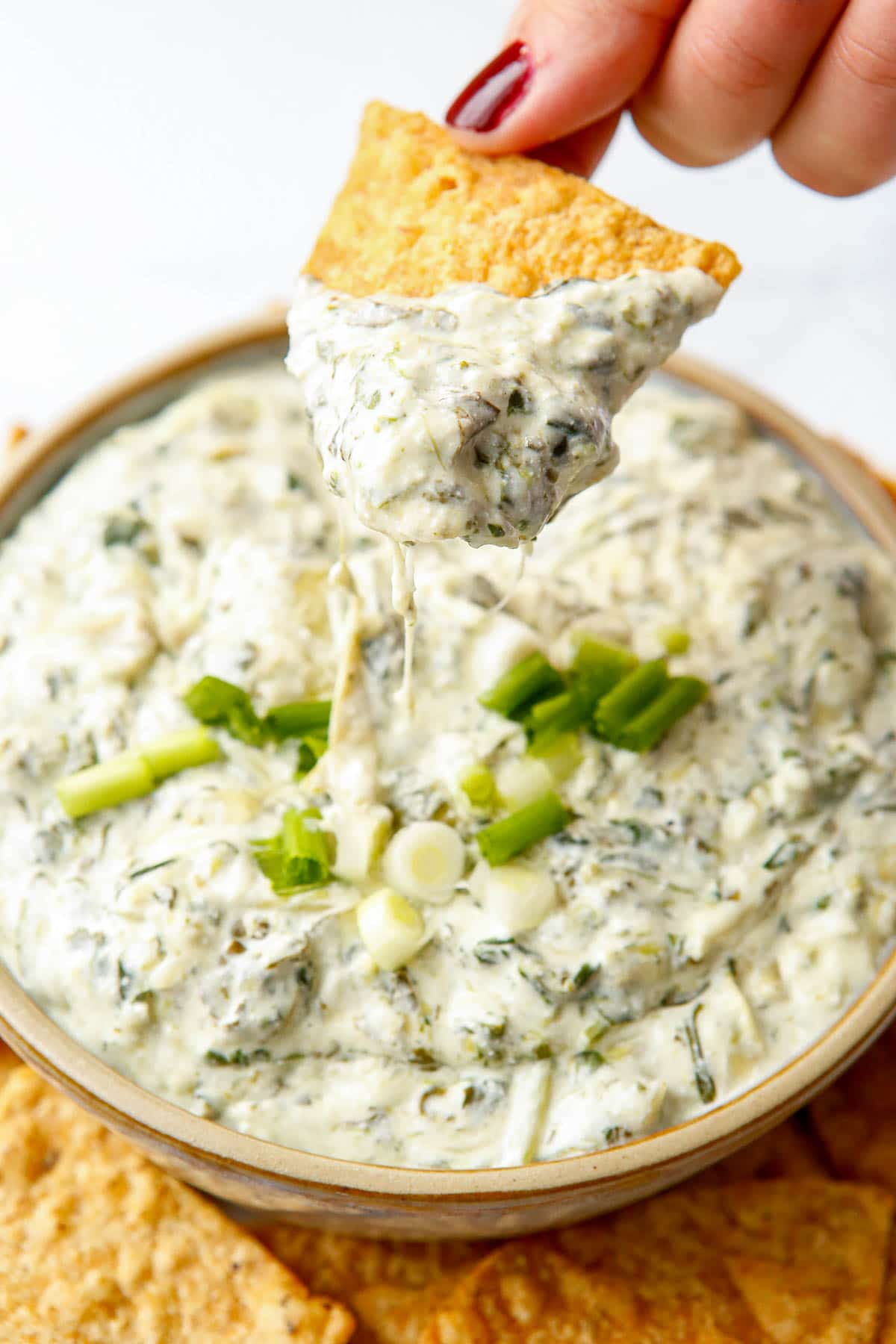 hot spinach artichoke dip with a chip