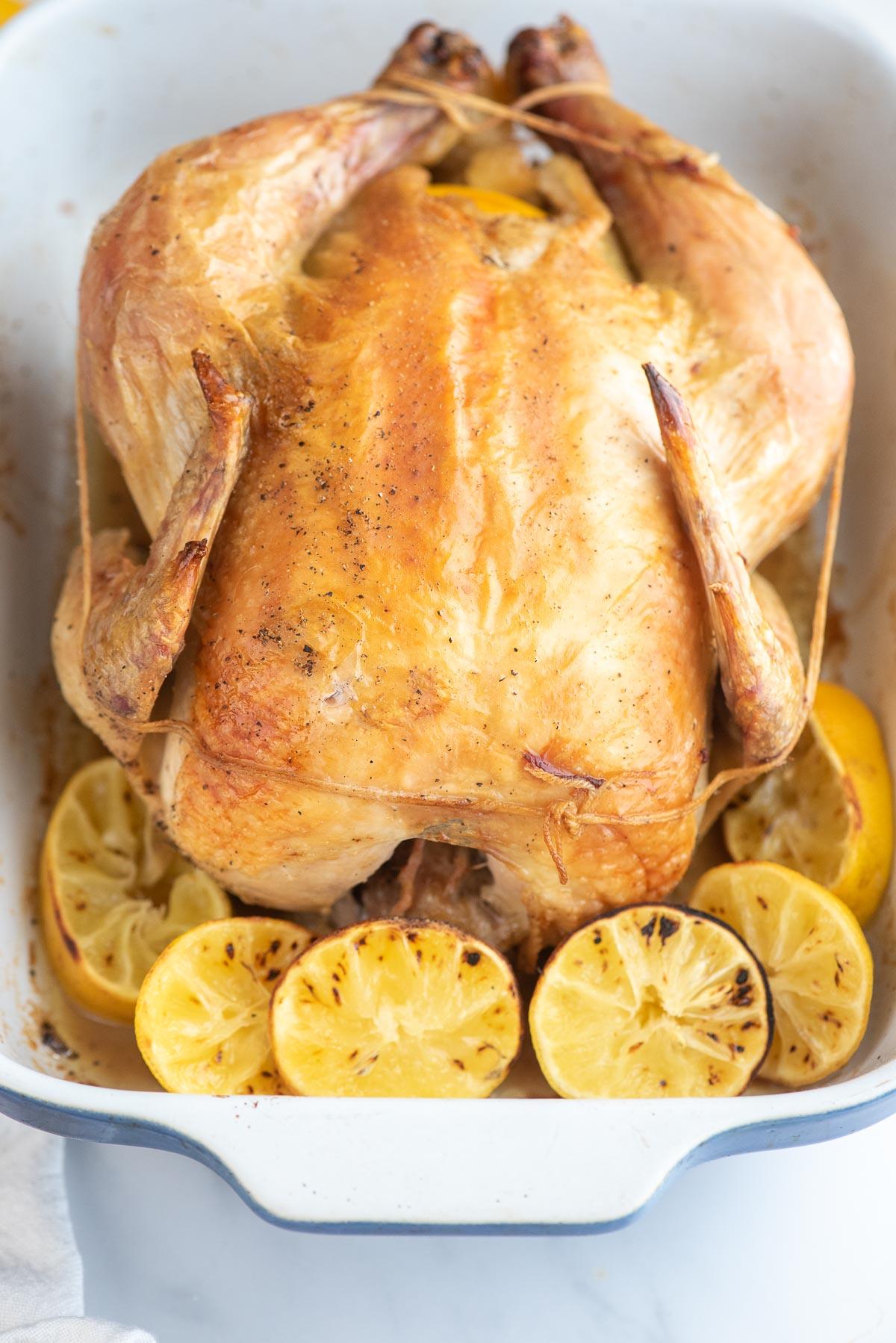roast chicken close up