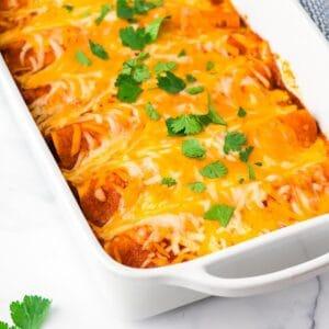 chicken enchiladas sq