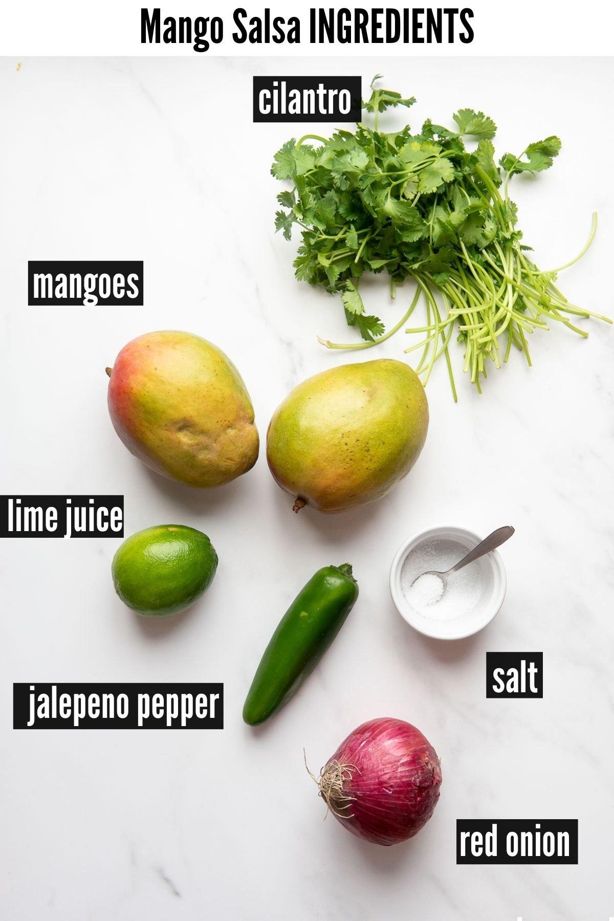 mango salsa ingredients image