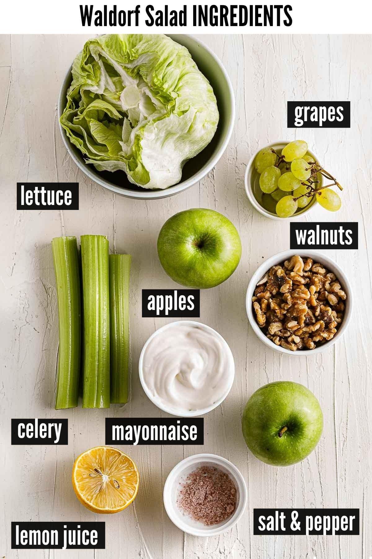 waldorf salad ingredients image
