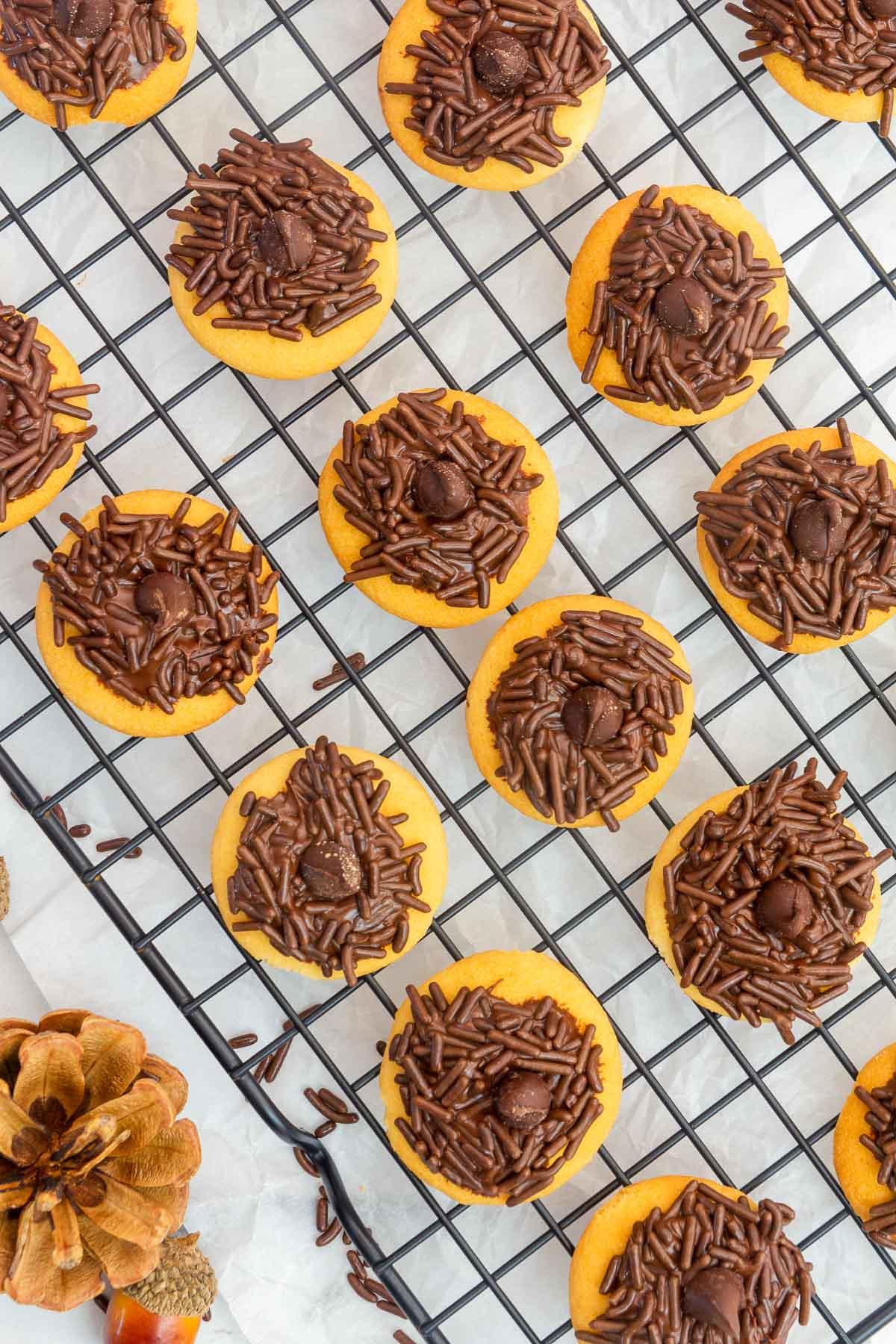 acorn brownie bites tops on wire rack