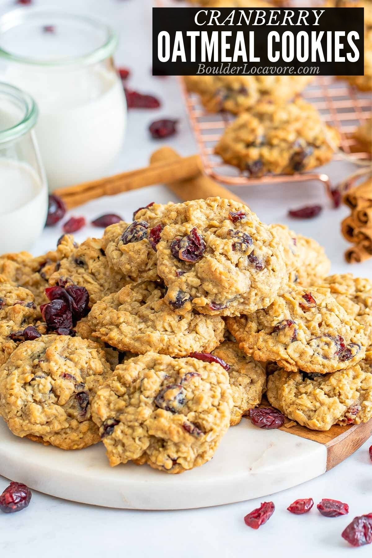 CRANBERRY OATMEAL COOKIES TITLE IMAGE