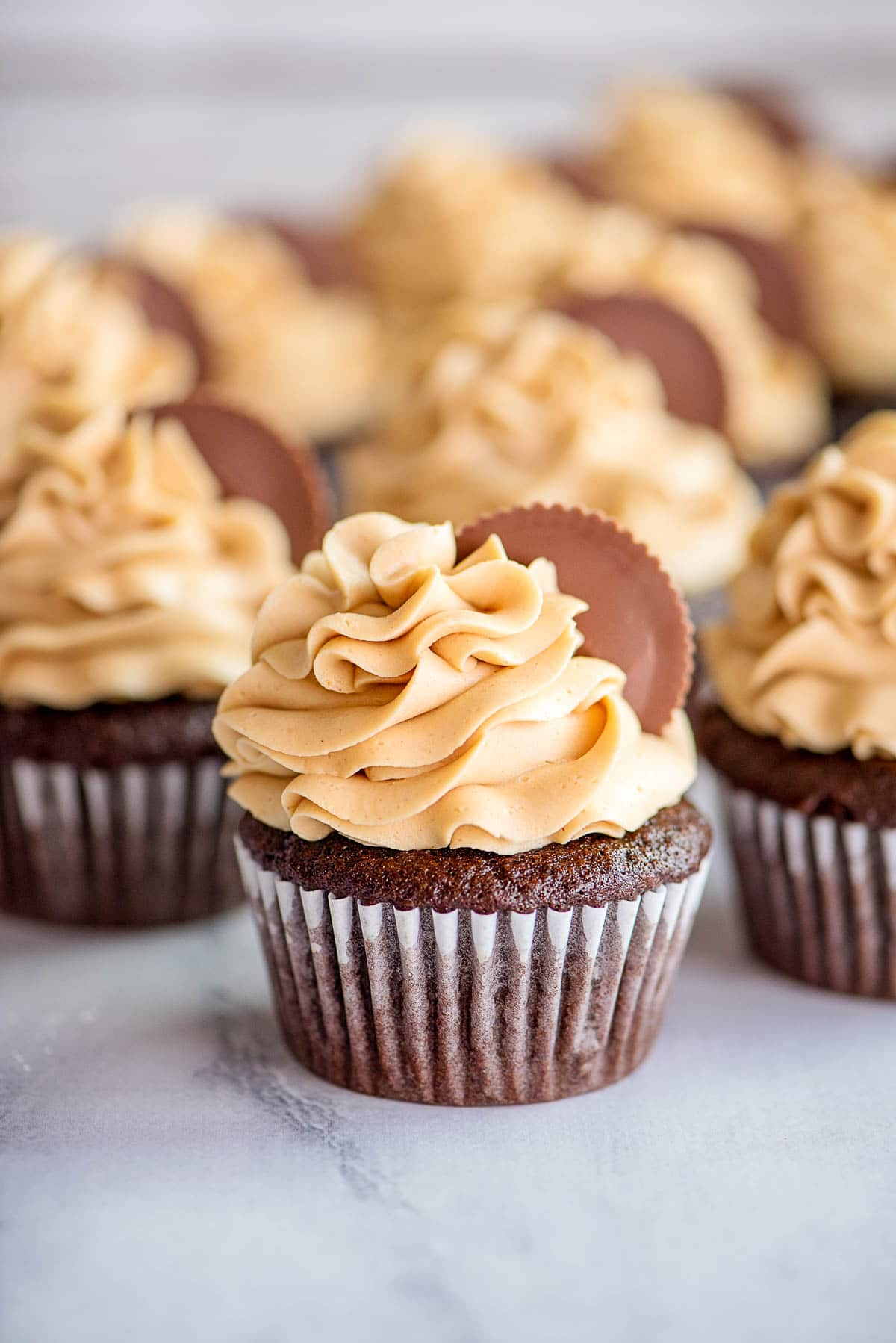 chocolate peanut butter cupcake front
