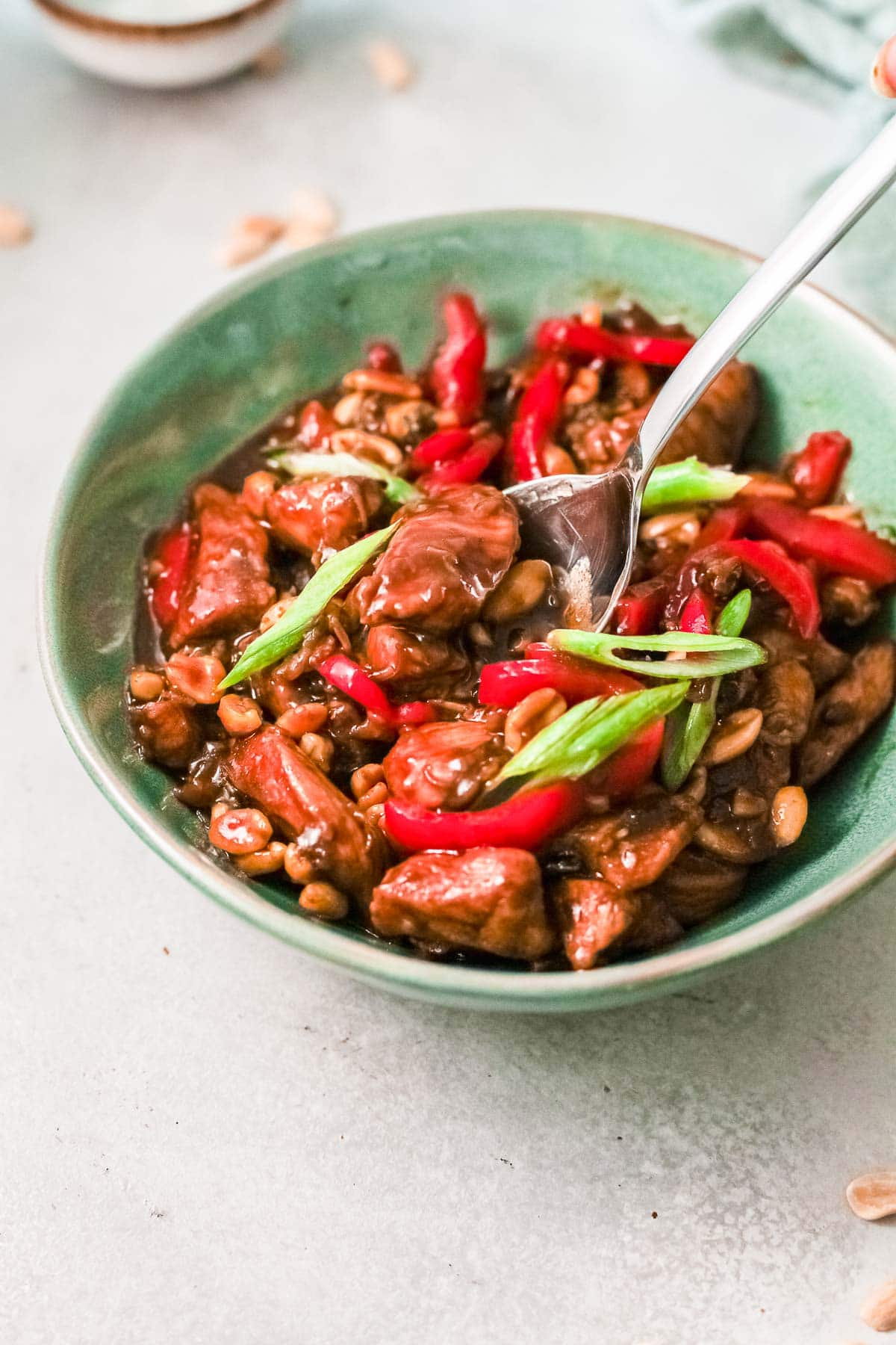 kung pao chicken side view