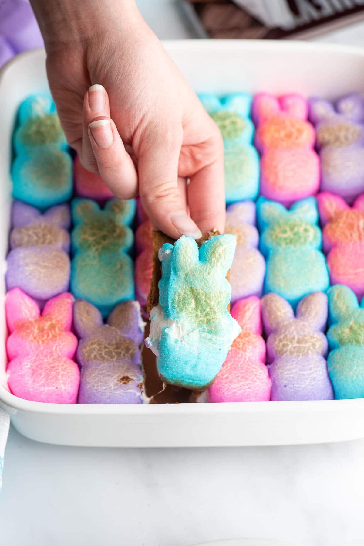 peeps smores dip blue bunny